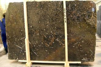 Fossilien Braun